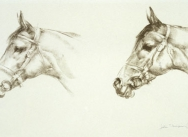 Two Horses Heads (Mill Reef)