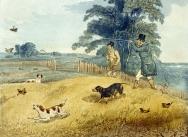 Partridge Shooting 1835, Plate 2