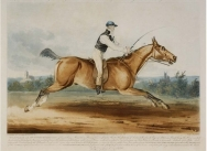 Equestrian Match 600 Guineas. Mr William Hutchinson on 'Stareing Tom', racing against time
