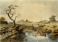 Foxhunting - Noon